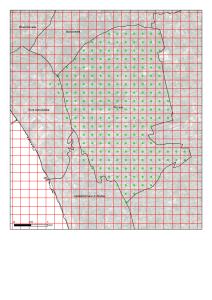 Pompei, maglia ortogonale con passo 250 m e relativi centroidi.