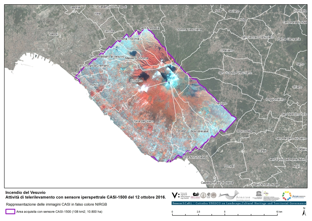 17015_Incendio_Vesuvio_CASI2016_Tav00
