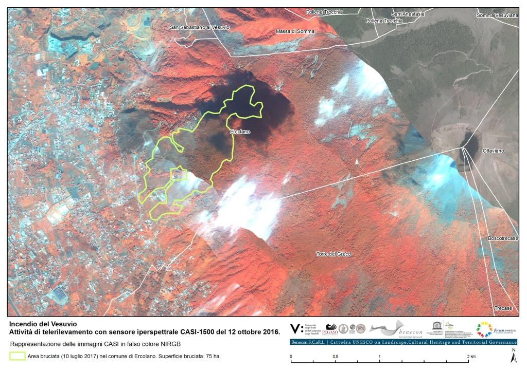 17015_Incendio_Vesuvio_CASI2016_Tav02